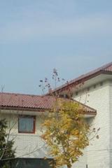 demeny-fa-ajto-ablak-nyilaszaro-csaladi-haz-171